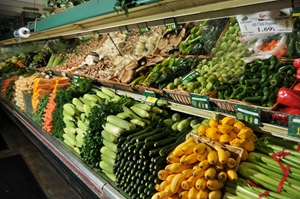 The difference between organic and sustainable agriculture