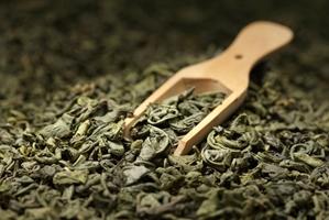 Tea plantation under investigation for poor conditions