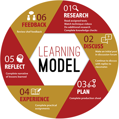 Learning model: Research, discuss, plan, experience, reflect, feedback.